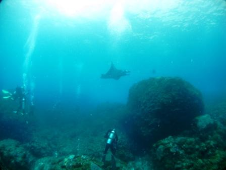 Manta Point : l'attente (Bali)