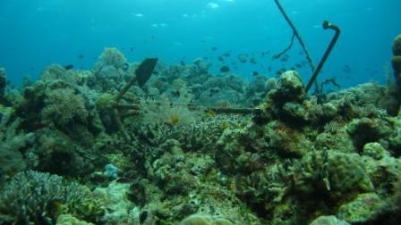 Vue sous-marine - Taka Bonerate