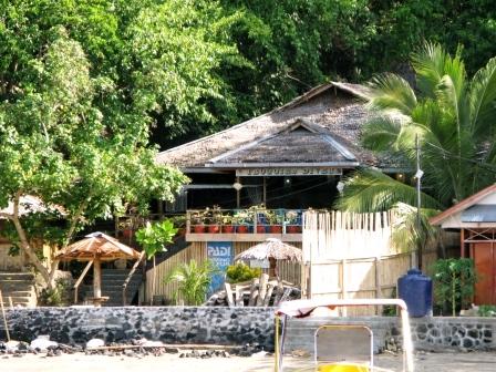09/11 - Froggies (Bunaken - Sulawesie)