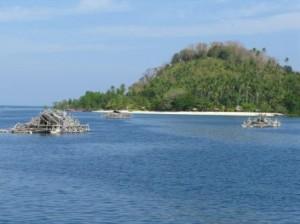 Détroit de Lembeh (Sulawesi)