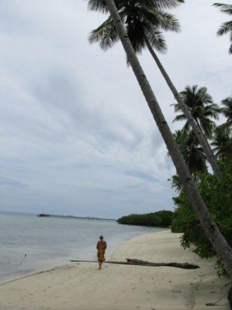 Promenade (Mansuar Island - Raja Ampat)