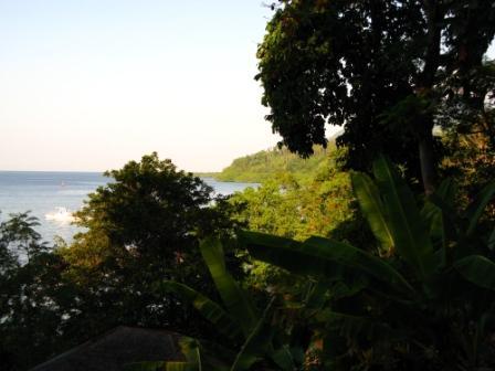 Vue sur la mer (Froggies - Bunaken)